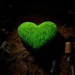 Тезисы любви