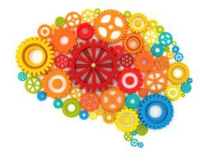 brain-wheels