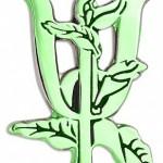 """""""Актуальные проблемы теории и практики современной психологии"""" магистрам АСОУ 2014-2015 уч. год"""