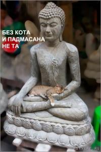 padmasana_tn