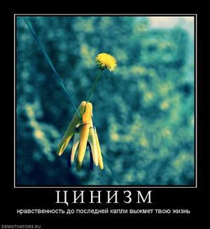 199768_tsinizmthumbnail