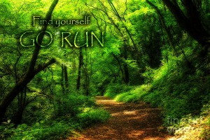 find-yourself-go-run-magic-forest-beverly-claire-kaiya