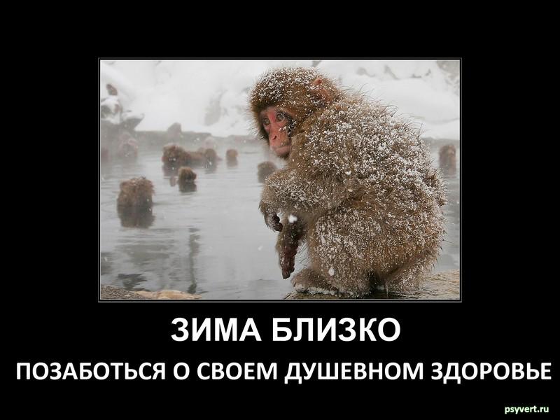 Помощь психолога в Москве tatyana@psyvert.ru skype: ta.dra.la Автор фото masterok.livejournal.com