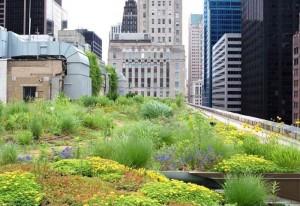 green---city hall