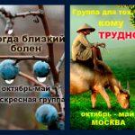 Две группы для людей в сложных жизненных ситуациях. Октябрь-май. Москва